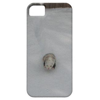 雪のフェレット iPhone SE/5/5s ケース