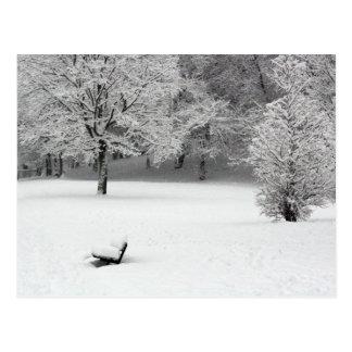 雪のベンチおよび木 ポストカード