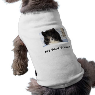 雪のボーダーコリー ペット服