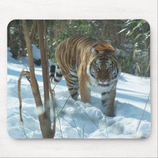 雪のマウスパッドのシベリアトラの歩く マウスパッド