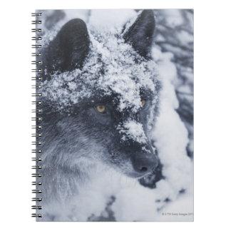 雪の一匹狼 ノートブック