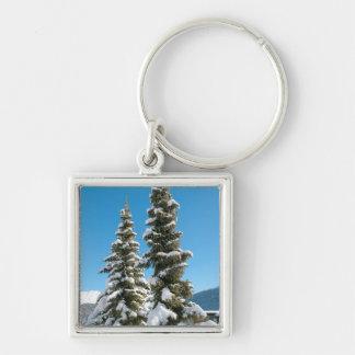 雪の下の松の木 キーホルダー
