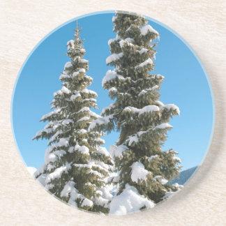 雪の下の松の木 コースター