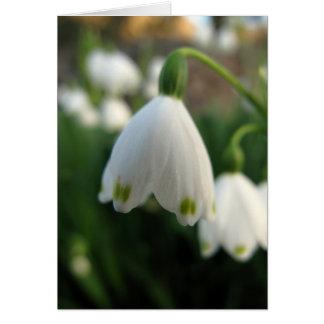 雪の低下の花のメッセージカード カード