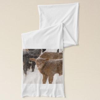 雪の子牛 スカーフ