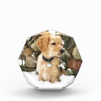 雪の子犬 表彰盾