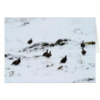 雪の挨拶状のライチョウ カード