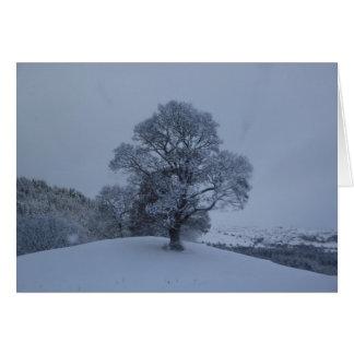 雪の木 カード