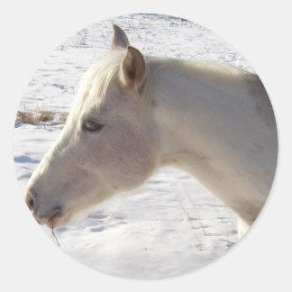 雪の白馬 ラウンドシール