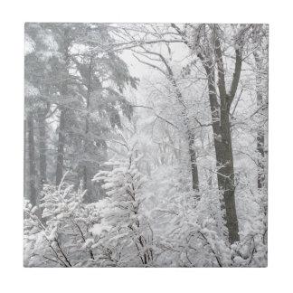 雪の砂糖菓子 --- タイル
