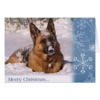 雪の美しいジャーマン・シェパード犬 カード