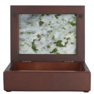 雪の草 ジュエリーボックス