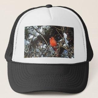 雪の荷を積んだ木の写真の芸術の赤い(鳥)ショウジョウコウカンチョウ キャップ