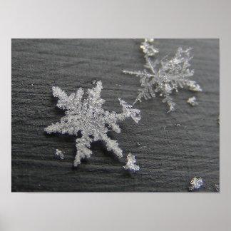 雪の薄片45の~のプリント ポスター