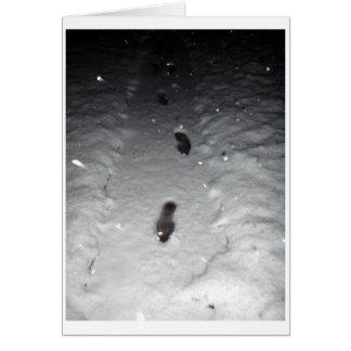 雪の足跡 カード