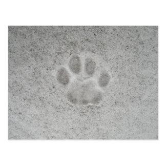 雪の郵便はがきの子ネコの足のプリント ポストカード