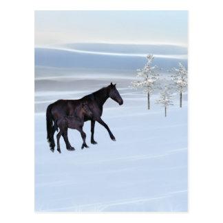 雪の馬そして子馬 ポストカード