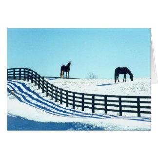 雪の馬 カード