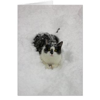 雪のJake カード
