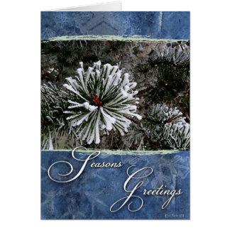 雪季節の挨拶の松の木 カード