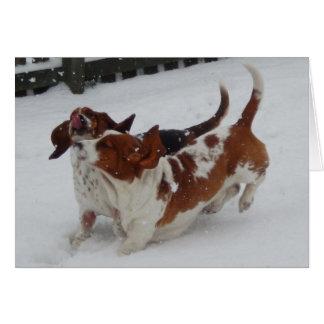 雪片をつかまえているバースデー・カードw/Cuteのバセット犬 カード