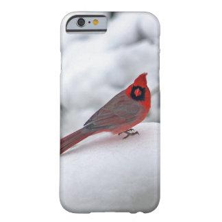 雪6243の(鳥)ショウジョウコウカンチョウ BARELY THERE iPhone 6 ケース