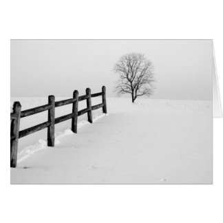 雪 カード