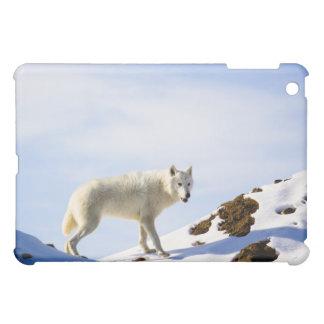 雪ED地勢 iPad MINIケース