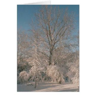 雪Notecardsと荷を積んだ木 カード