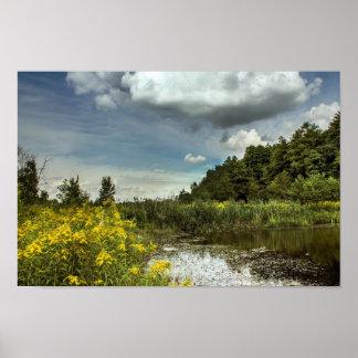 雲および野生の花 ポスター