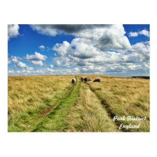 雲と歩くこと! ポストカード