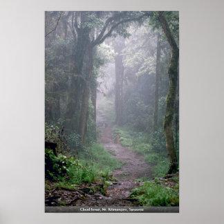 雲の森林、キリマンジャロ、タンザニア ポスター