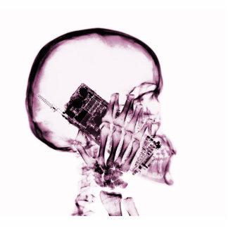 電話-ピンクのX線の骨組 写真彫刻(台付き)