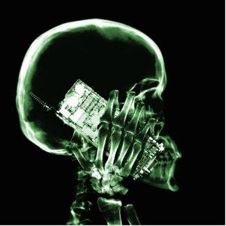 電話-緑のX線の骨組 写真彫刻(台付き)
