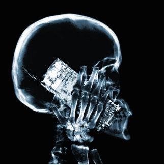 電話-青のX線の骨組 写真彫刻(台付き)