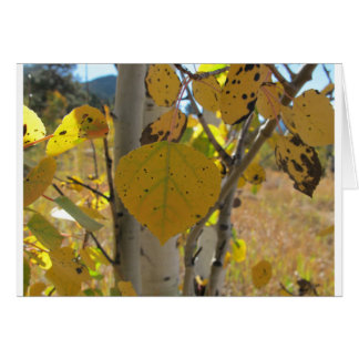 震動《植物》アスペンの葉 カード