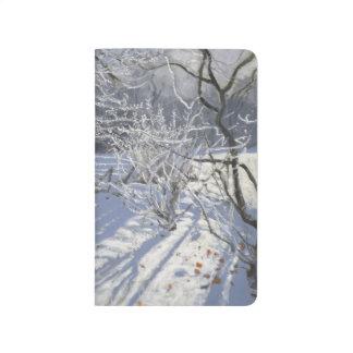 霜の霜Markeaton Derby.UK.2012 ポケットジャーナル
