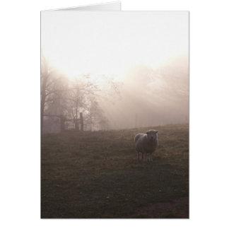 霧から カード