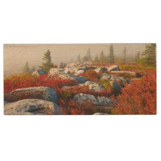 霧と景色トロッコの芝地の荒野の秋 ウッドUSBフラッシュドライブ