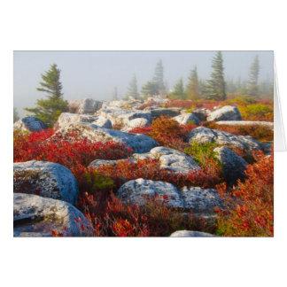 霧と景色トロッコの芝地の荒野の秋 カード