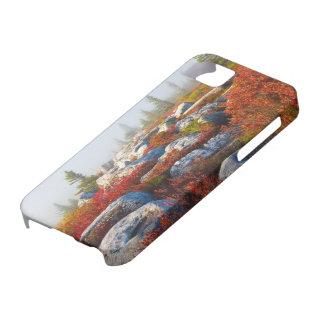霧と景色トロッコの芝地の荒野の秋 iPhone SE/5/5s ケース