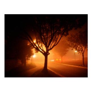 霧のミステリー木 ポストカード