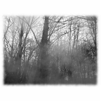 霧の木。 白黒。 写真彫刻キーホルダー
