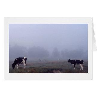 霧の牛 カード
