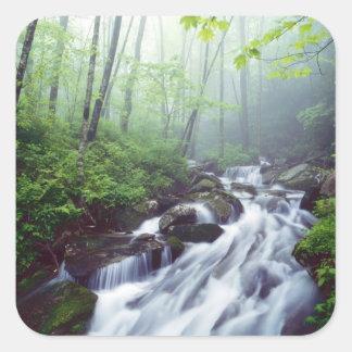 霧深いによって滝のように落ちるLinnの入江の入り江 スクエアシール