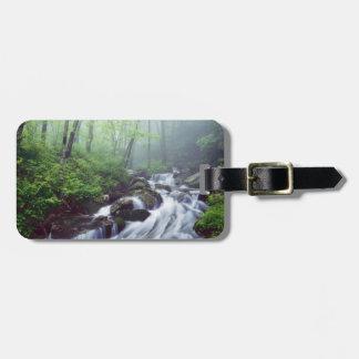 霧深いによって滝のように落ちるLinnの入江の入り江 ラゲッジタグ