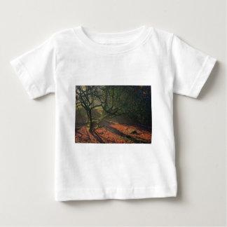 霧深い完全に乾かされた池 ベビーTシャツ