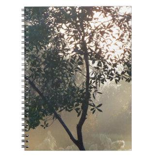 霧深い朝の日の出 ノートブック
