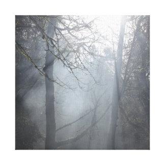 霧深い木のキャンバス- Goldstream キャンバスプリント