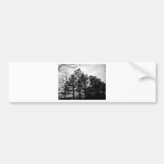 霧深く空気のようで幽霊のよく出るな木の森林森の霧 バンパーステッカー